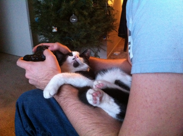 Nigel thinks a good place to sleep is in T's arms when he's playing video games.