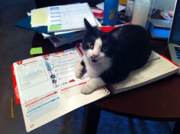 Nigel refusing to let me write lesson plans.