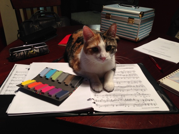 Nora refusing to let me study a score.